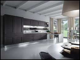 contemporary dream kitchens