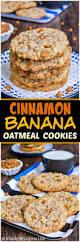 lexus biscuit bangladesh best 20 cinnamon cookies ideas on pinterest u2014no signup required