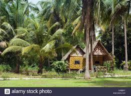 bungalow under the palms ko jum or koh pu island krabi thailand