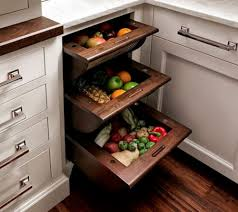 storage kitchen cabinet kitchen cabinet vegetable storage home design ideas