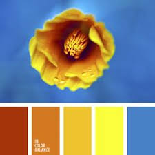 Blue Orange Color Scheme A Combination Of Rich Colors Orange Red Yellow Green And Blue
