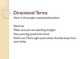 notes anatomical position and directional terms ppt video