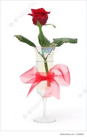 picture of rose in vase