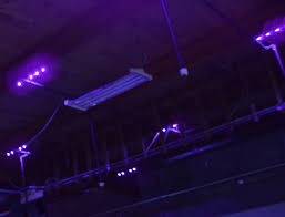 how much are black lights black light lighting sunlite science and technology inc