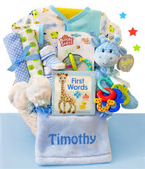 baby baskets baby boy gift baskets baby basket express