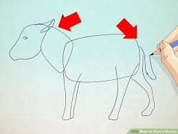 draw donkey 6 steps pictures wikihow