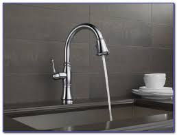 delta cassidy kitchen faucet delta cassidy kitchen faucet canada kitchen set home design