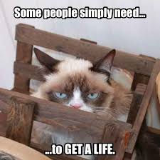 Get A Life Meme - some people simply need to get a life grumpy cat
