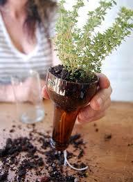 Self Watering Planters by Best 25 Self Watering Bottle Ideas On Pinterest Watering Plants