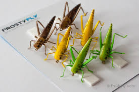 realistic flies hopper set of 6 flies 3 colors 2 hook sizes
