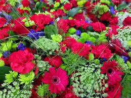 native hawaiian plants for sale mother u0027s day flowers u2013 tasty island