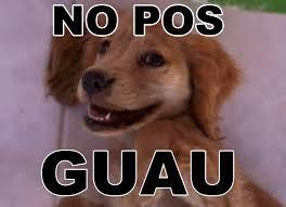 Pos Meme - no pos guau by alex170702 on deviantart