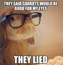 My Eyes Meme - they said carrots would be good for my eyes they lied cute memes