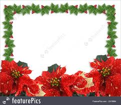 christmas holly and poinsettias border illustration