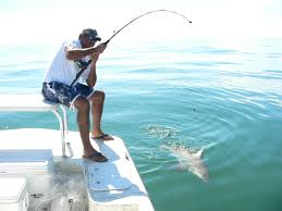 shark fishing playin hooky south padre island fishing charters