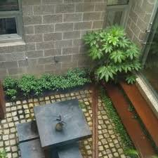 Interior Courtyard 210 Best Courtyards Images On Pinterest Gardens Landscaping And