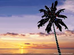 beach christmas tree wallpapers hd i hd images
