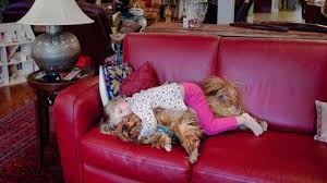 Why Do Dogs Lick The Sofa Should You Let Your Dog Lick Your Face The New York Times