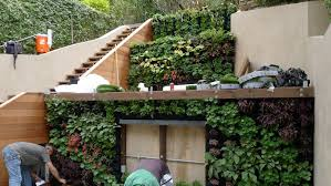 Garden Wall Systems by Plants On Walls Vertical Garden Systems Terraced Vertical Garden