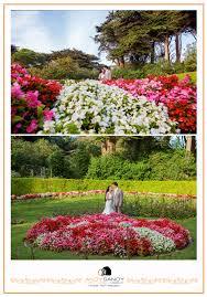 Botanical Gardens Golden Gate Park by Wilhelmina Tulip Garden Golden Gate Park San Francisco