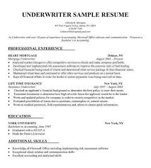 How To Prepare A Resume For A Job by Download Make Your Own Resume Haadyaooverbayresort Com
