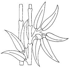 coloriage fleurs et plantes bambous à colorier allofamille