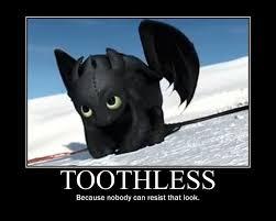 Toothless Meme - toothless the dragon meme google search toothless pinterest
