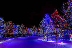 Fairy Lights In Trees by Picture Nature Winter Snow Night Time Fairy Lights Street Lights