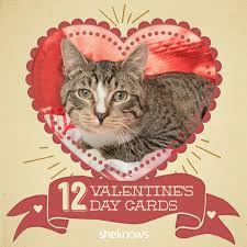 Grumpy Cat Meme Valentines Day - 12 kitty cat valentine s day cards that will make you aww