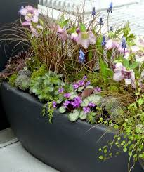 115 best cool containers images on pinterest garden ideas