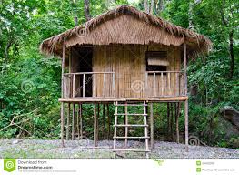 superb little house plans 3 travel little hut jungle 34452309