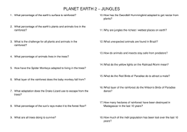planet earth 2 jungles tropical rainforest worksheet by