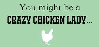 Chicken Running Meme - naturally loriel you might be a crazy chicken lady if