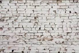 How To Paint A Brick Wall Exterior - a limewashed facelift for my exterior u2022 segreto secrets