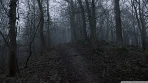 spooky wallpapers dark spooky wallpaper background 1920 x 1080 dark forest wallpapers collection 58