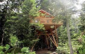 chambre d hote st martin vesubie cabane dans les arbres cabane chamois à martin vesubie alpes
