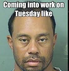 Tiger Woods Meme - tiger woods memes