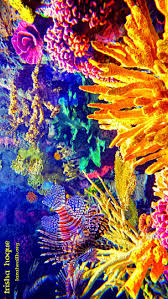 25 best coral reef animals ideas on pinterest coral reef craft