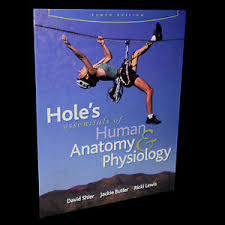 Hole Anatomy And Physiology 13th Edition Holes Essentials Of Anatomy And Physiology Kijiji In Ontario