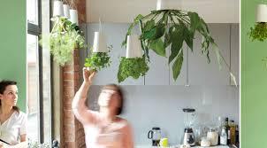 hanging upside down pot plants unique indoor planters