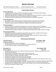 Account Executive Resume Sample by Resume Making The Perfect Cv Statement Of Career Objectives