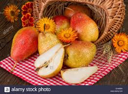 pears fruit autumn thanksgiving day decoration stock photo