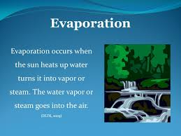 the water cycle by meghan brown what do we already know about
