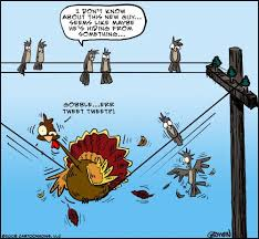 happy thanksgiving by gbowen media culture toonpool