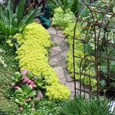 186 best fairy garden images on pinterest fairies garden fairy
