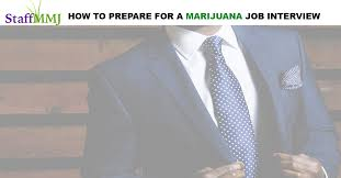 have a marijuana job interview rethink your approach staff mmj
