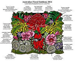 native australian plants native plant sale melbourne
