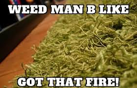 Funny Memes About Weed - weed memes funny marijuana memes
