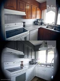 best 25 painting wood cabinets ideas on pinterest redoing