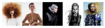 2017 naha nominees focus on hair